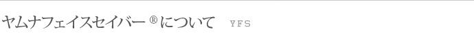 ヤムナフェイスセイバー(YFS)について